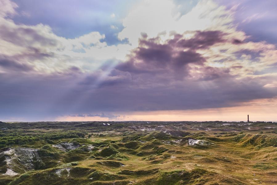 Blick in Norderneys Dünenlandschaft